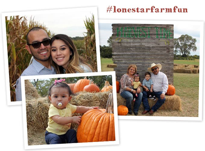 Photo Opps at Lone Star Family Farm & Corn Maze