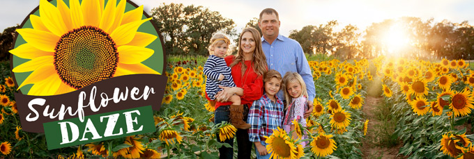 Sunflower Daze 2021 - Stephenville, TX